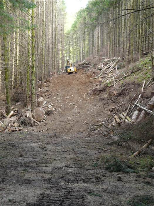 Work begins to clear the pipeline corridor through Coedydd Aber Forest 16 June 2015