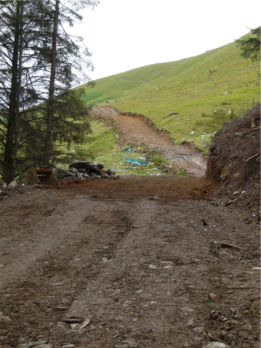 The bench for the pipeline trench is cut through from the forest to the end of the pipe on the mountain 7 July 2015