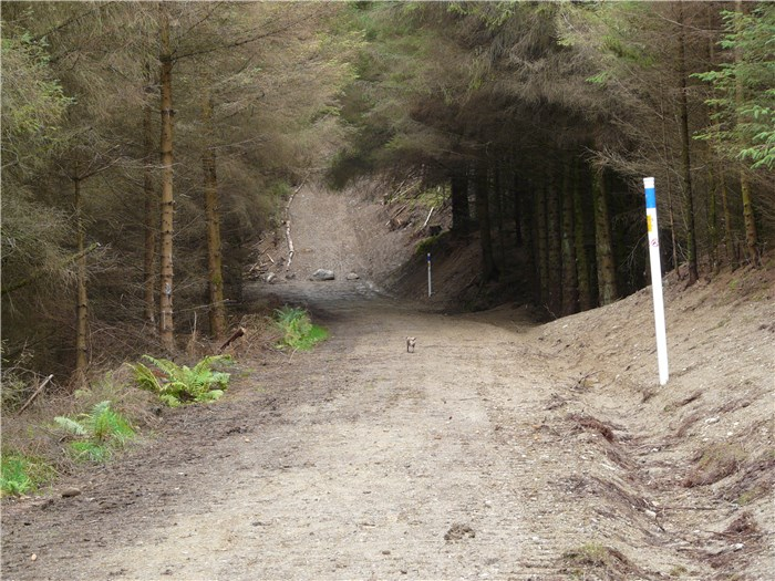 The installation of the pipeline in the bank of the forest track and reinstatement continues 2 August 2015